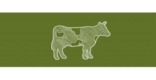 au lait de Vache...