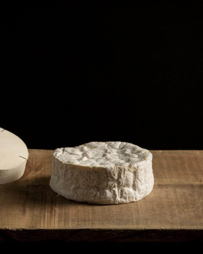 Camembert de Normandie AOP : Terroir du Pays-d'Auge