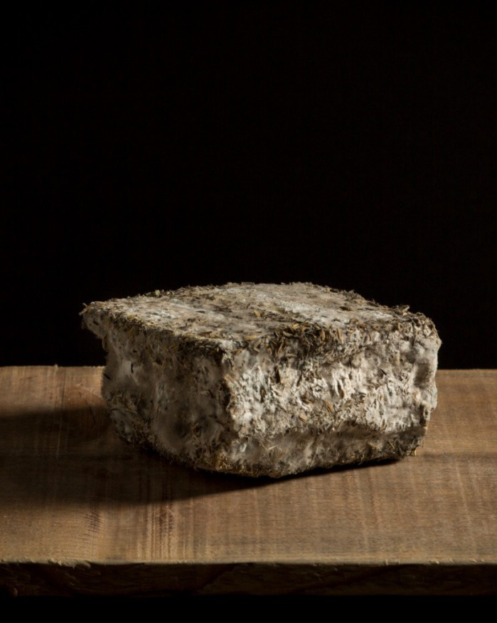 Fromage Corse aux Herbes : Brin d'Amour